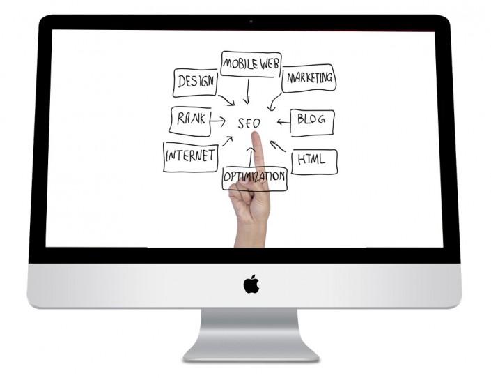 CV Référencement naturel et Référencement Web Payant
